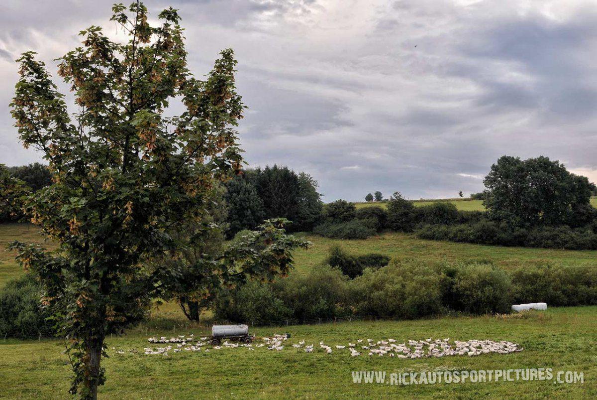 Eifel Rallye 2014