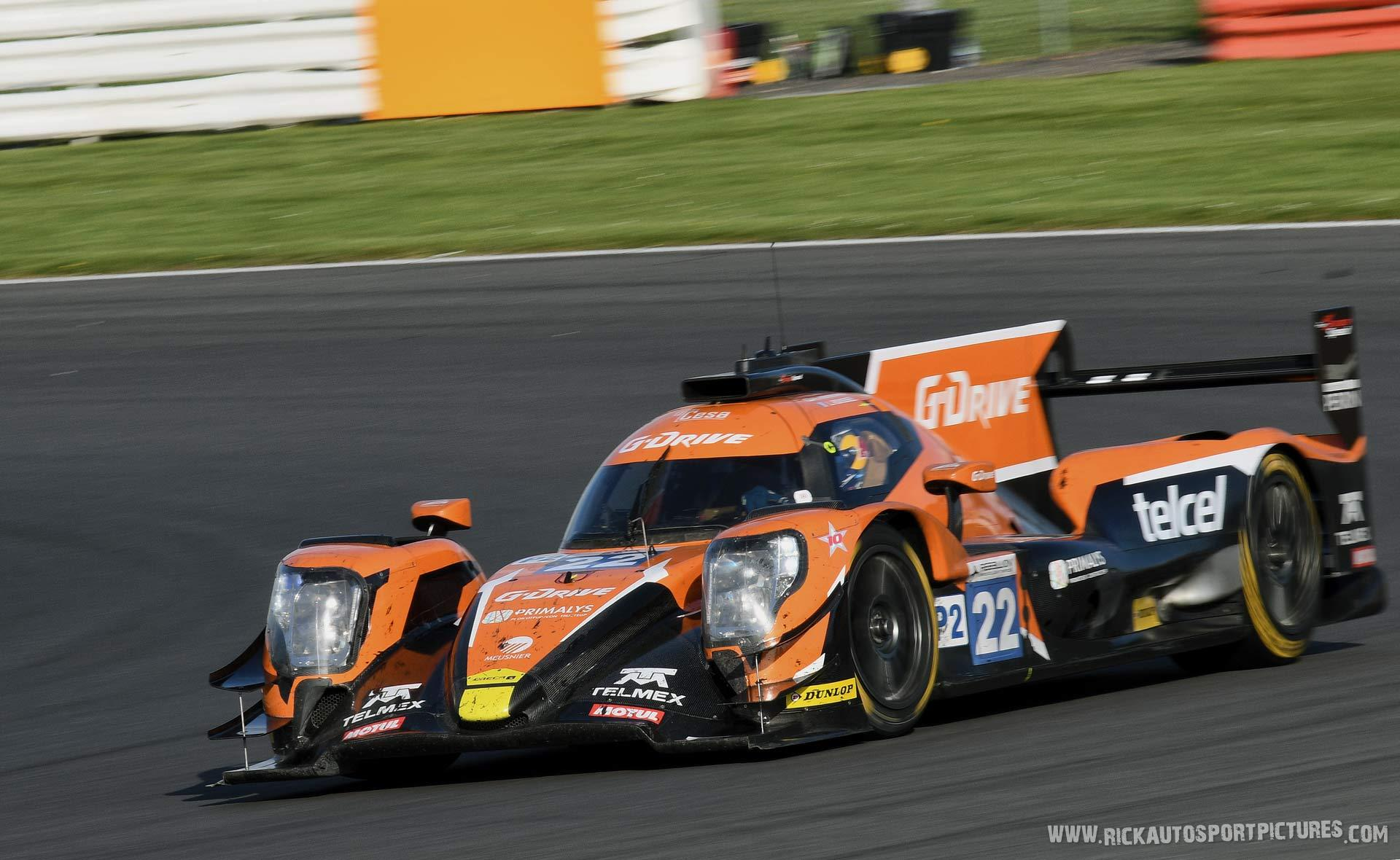 Memo Rojas Silverstone 2017